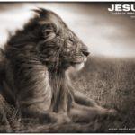 JESUSOleaodatribodejuda
