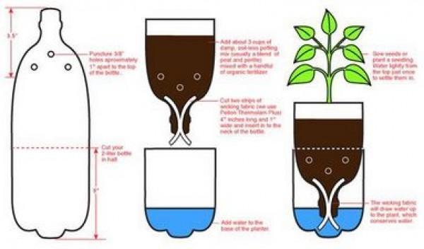 vaso de planta com garrafa pet