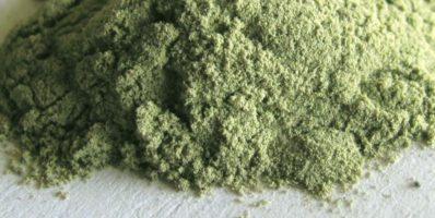 argila-verde-po