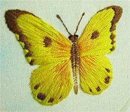 borboleta-ponto-cheio-01