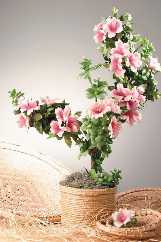 Resultado de imagem para imagens de azaleias