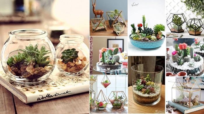 Como fazer um lindo mini-jardim (terr?rio) - Arteblog