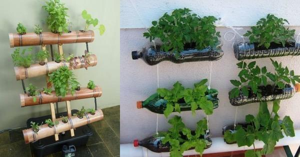 Famosos Horta vertical e suspensa com garrafa pet e bambus - VÁRIAS FORMAS  SL49