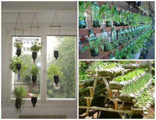 Conhecido Horta vertical e suspensa com garrafa pet e bambus - VÁRIAS FORMAS  JS31